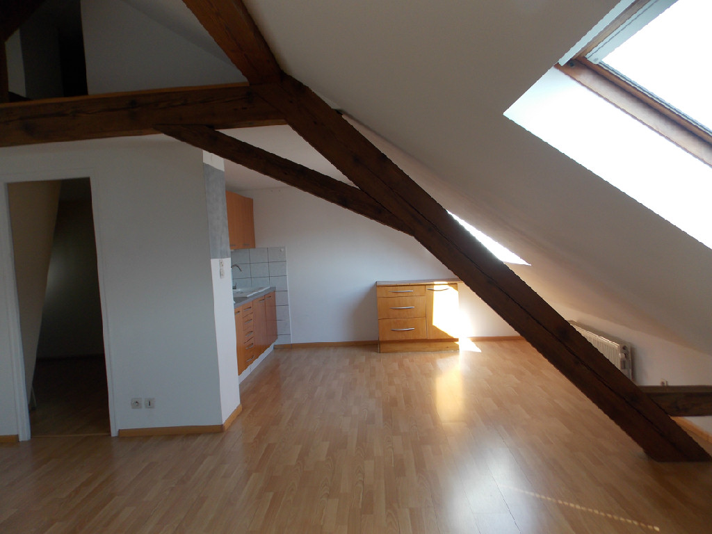 Location De Maison Location D Appartement 224 Mulhouse